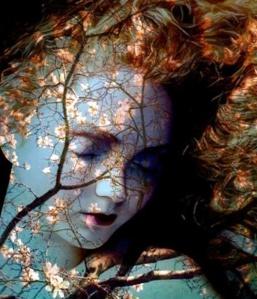 ophelia-by-imagine-http://womboflight.files.wordpress.com/2014/02/ophelia-by-imagine-studio.jpg