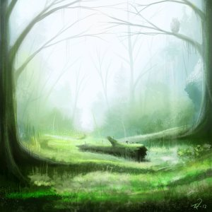 forest_glade_speedpaint_by_mattiasedstrom-d5c9wxn